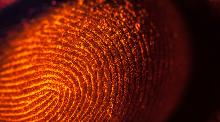 Secure identity trends 2015